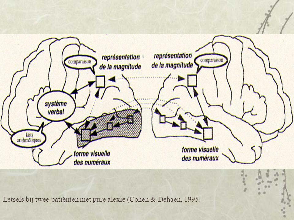 Letsels bij twee patiënten met pure alexie (Cohen & Dehaen, 1995 )