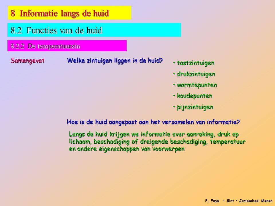 P. Feys - Sint – Jorisschool Menen 8 Informatie langs de huid 8.2 Functies van de huid 8.2.2 De temperatuurzin Samengevat Welke zintuigen liggen in de