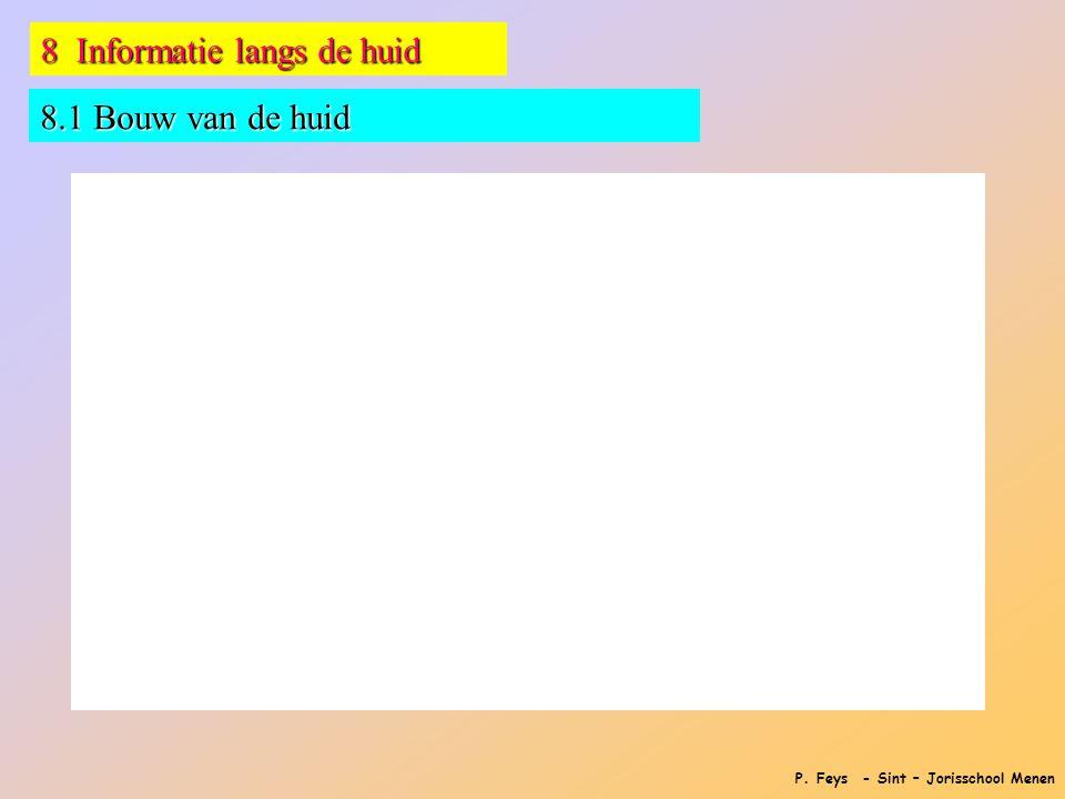 P. Feys - Sint – Jorisschool Menen 8 Informatie langs de huid 8.1 Bouw van de huid
