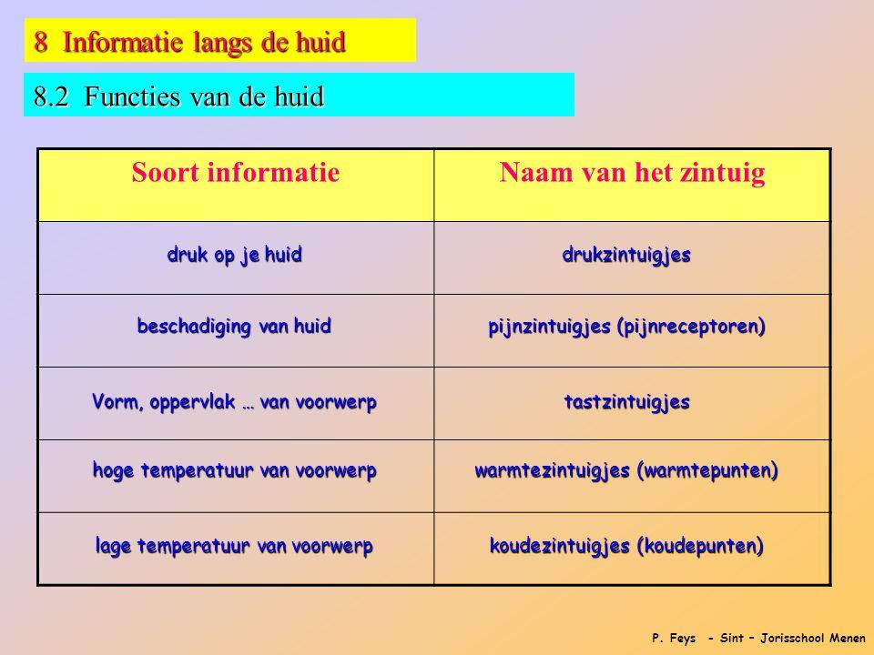 P. Feys - Sint – Jorisschool Menen 8 Informatie langs de huid 8.2 Functies van de huid Soort informatieNaam van het zintuig druk op je huid beschadigi