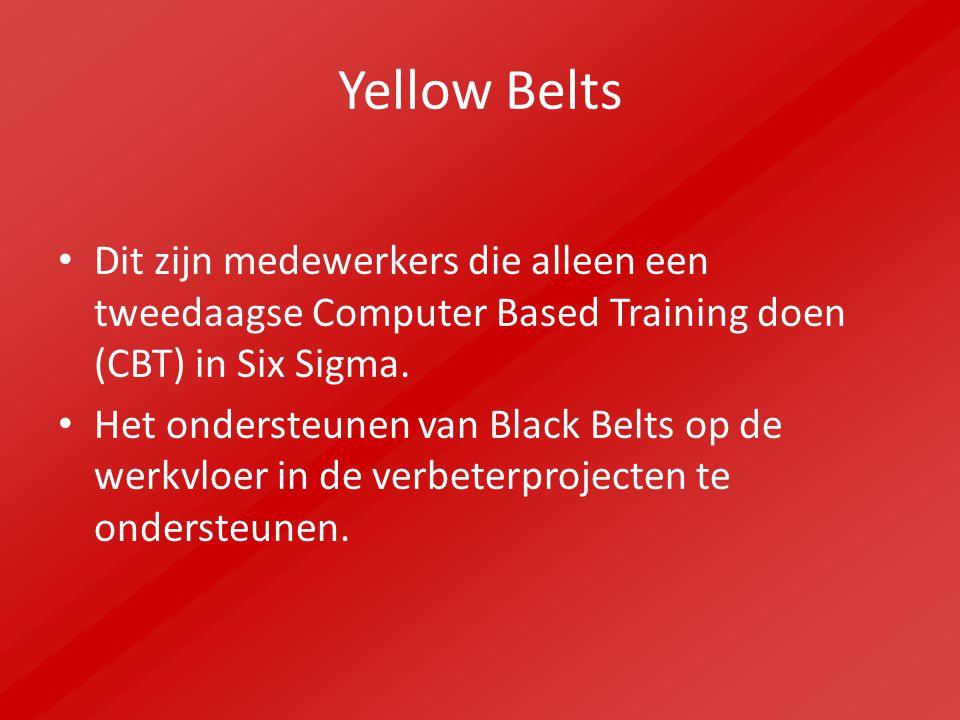 Yellow Belts Dit zijn medewerkers die alleen een tweedaagse Computer Based Training doen (CBT) in Six Sigma. Het ondersteunen van Black Belts op de we
