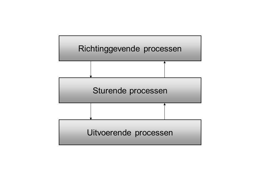 Sturende processen Richtinggevende processen Uitvoerende processen