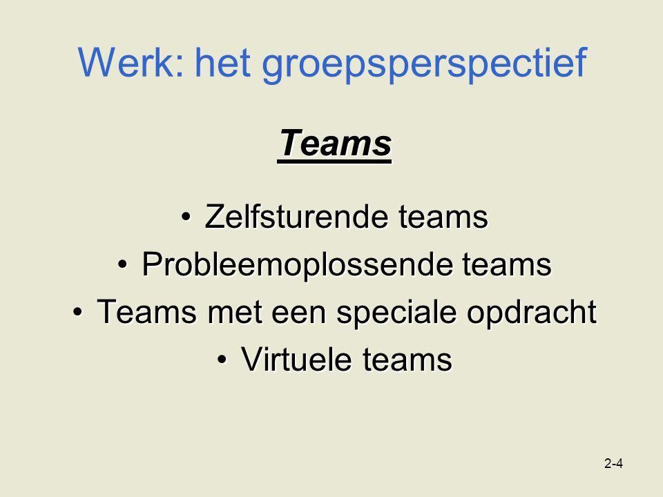 2-4 Werk: het groepsperspectief Teams Zelfsturende teamsZelfsturende teams Probleemoplossende teamsProbleemoplossende teams Teams met een speciale opd