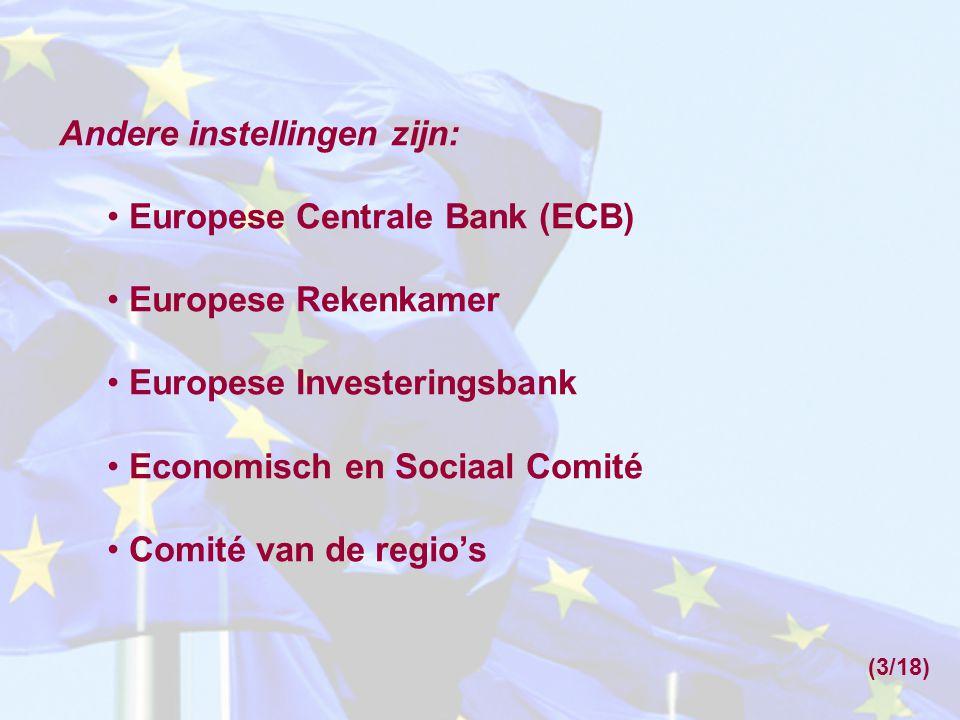 Wie mogen de vraag naar de rechtmatigheid van Europese richtlijnen en verordeningen aan het Hof voorleggen.