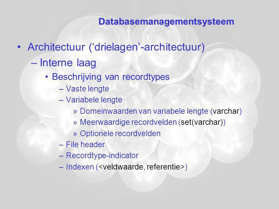 Databasemanagementsysteem Architectuur ('drielagen'-architectuur) –Interne laag Beschrijving van recordtypes –Vaste lengte –Variabele lengte »Domeinwaarden van variabele lengte (varchar) »Meerwaardige recordvelden (set(varchar)) »Optionele recordvelden –File header –Recordtype-indicator –Indexen ( )