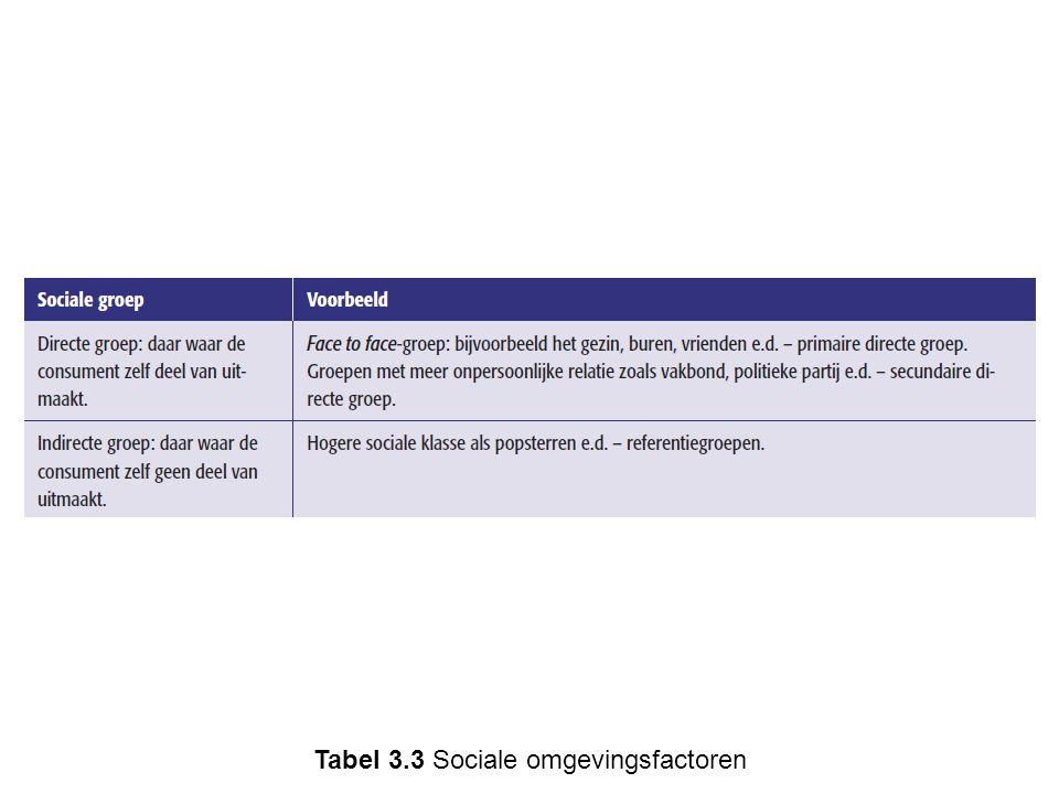 Tabel 3.3 Sociale omgevingsfactoren