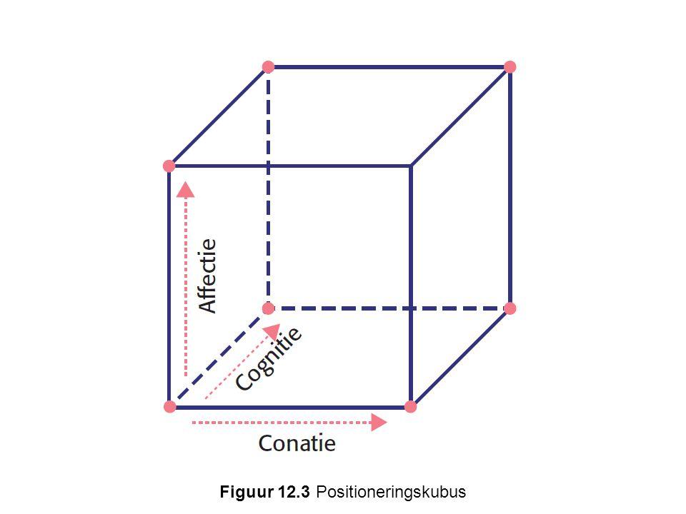 Figuur 12.3 Positioneringskubus