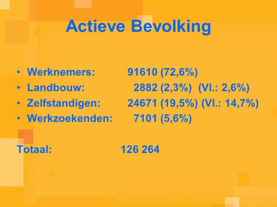 Actieve Bevolking Werknemers: 91610 (72,6%) Landbouw: 2882 (2,3%) (Vl.: 2,6%) Zelfstandigen: 24671 (19,5%) (Vl.: 14,7%) Werkzoekenden: 7101 (5,6%) Totaal: 126 264