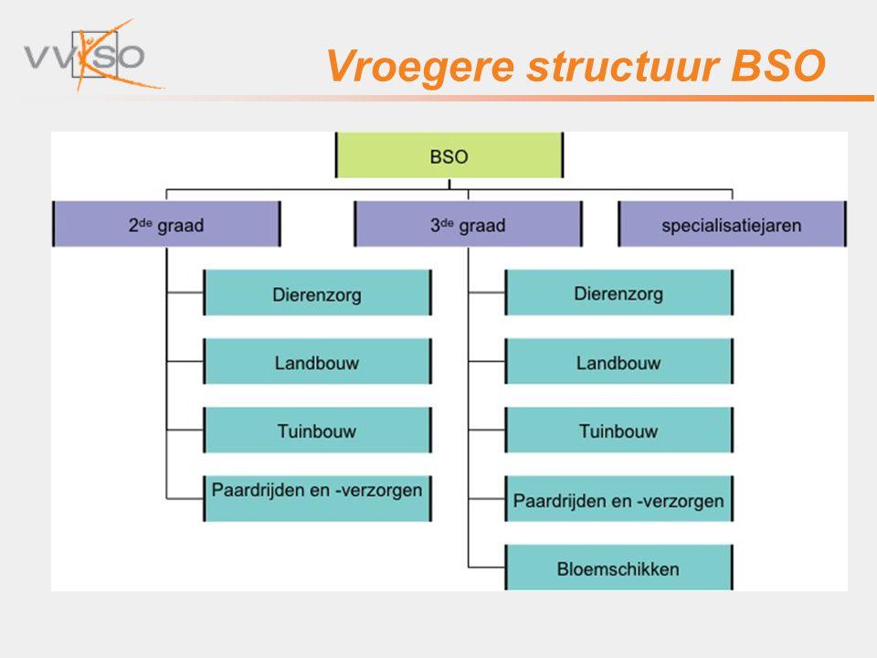 Vroegere structuur BSO