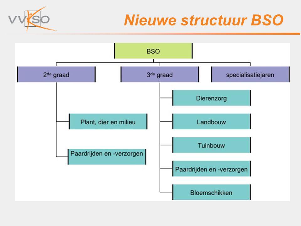 Nieuwe structuur BSO