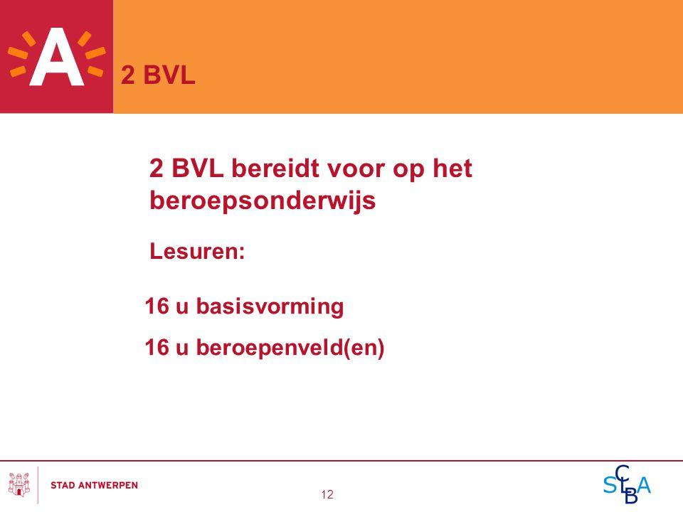 12 2 BVL Lesuren: 2 BVL bereidt voor op het beroepsonderwijs 16 u basisvorming 16 u beroepenveld(en)