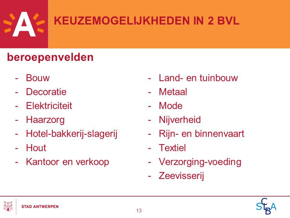 13 KEUZEMOGELIJKHEDEN IN 2 BVL beroepenvelden -Bouw -Decoratie -Elektriciteit -Haarzorg -Hotel-bakkerij-slagerij -Hout -Kantoor en verkoop -Land- en t