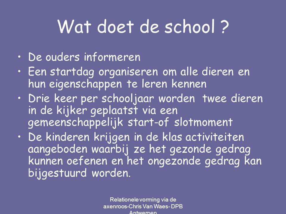Relationele vorming via de axenroos-Chris Van Waes- DPB Antwerpen Wat doet de school ? De ouders informeren Een startdag organiseren om alle dieren en
