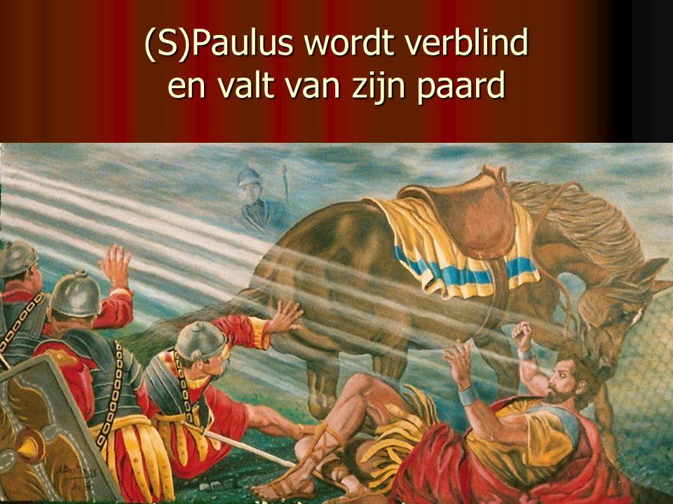 (S)Paulus wordt verblind en valt van zijn paard