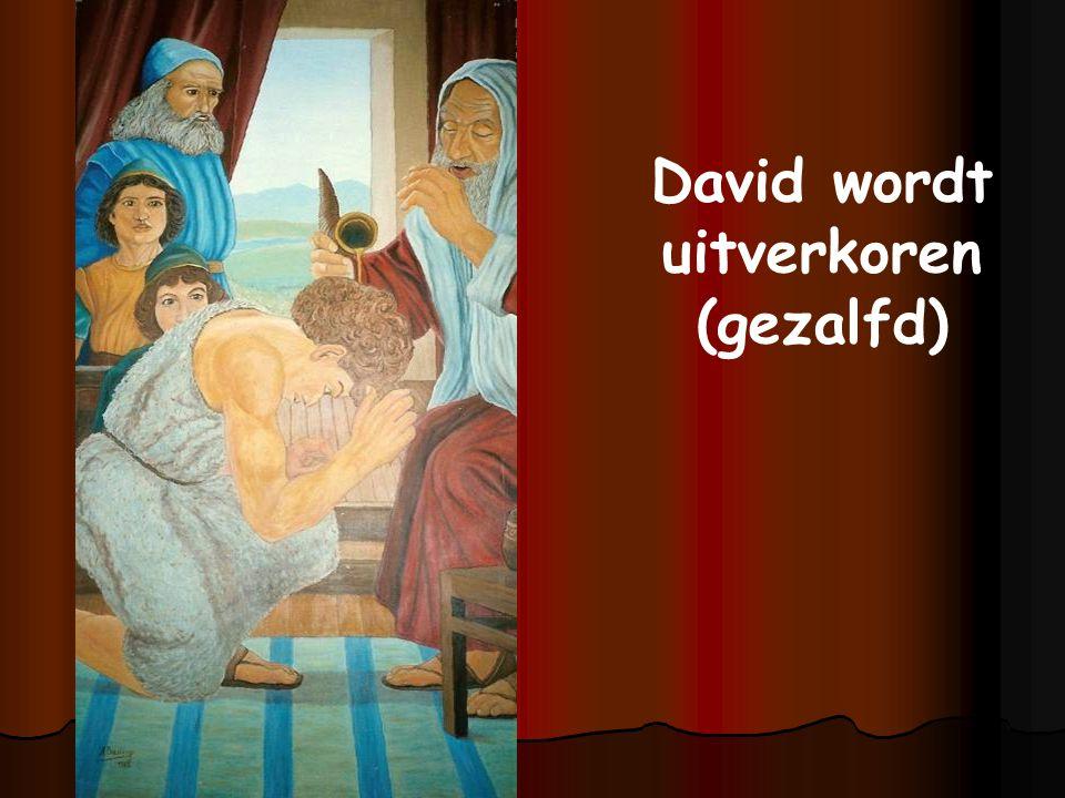 David wordt uitverkoren (gezalfd)