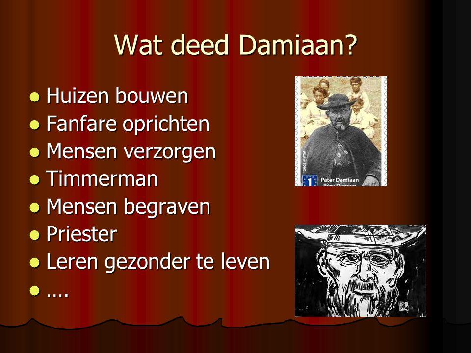 Wat deed Damiaan.