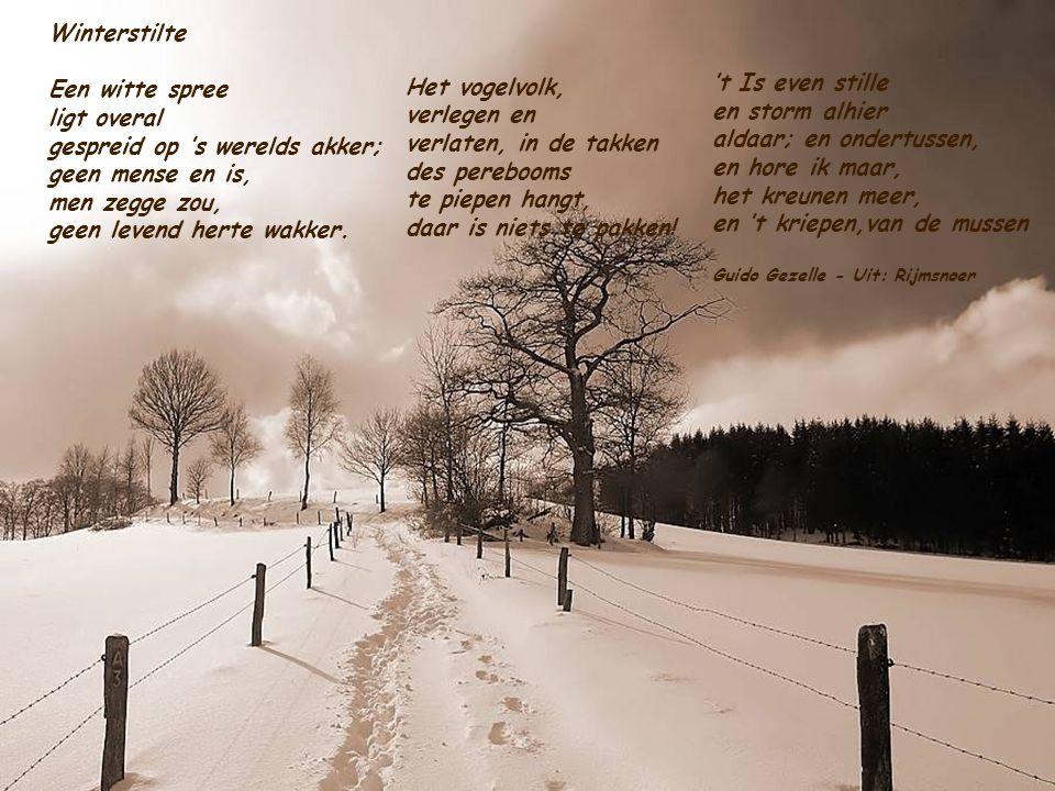 4. Nu is 't er stil 't Is wintertijd Er heerst de griep En knorrigheid De dag is kort De hemel grauw En pas maar op Je vat nog kou 5. Maar zie je 't v
