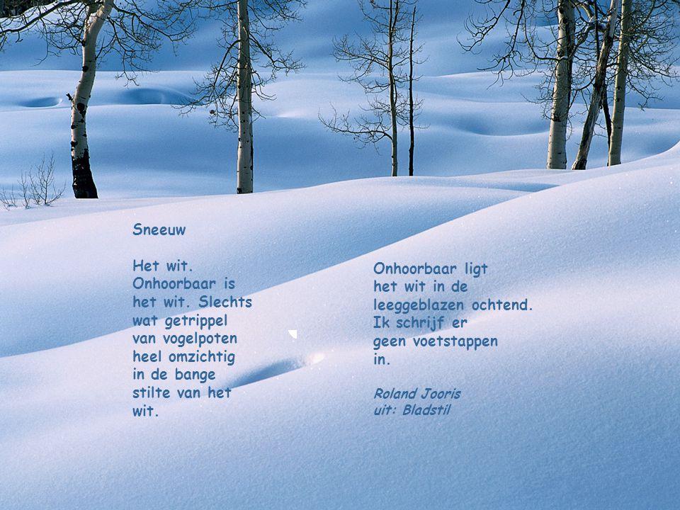Winter De sterren wintertintelen en de maan doorschijnt de melkwegnacht. Het kraakt van sneeuw op de aarde waar ik ga, een nieteling, een adem wit, ee