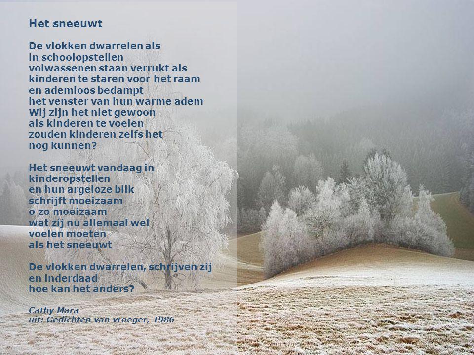 Winterpracht Een wollige witte deken uitgespreid over het bos De zachte witte sneeuw rust als een tapijt op het groene mos intense stilte..... alles g