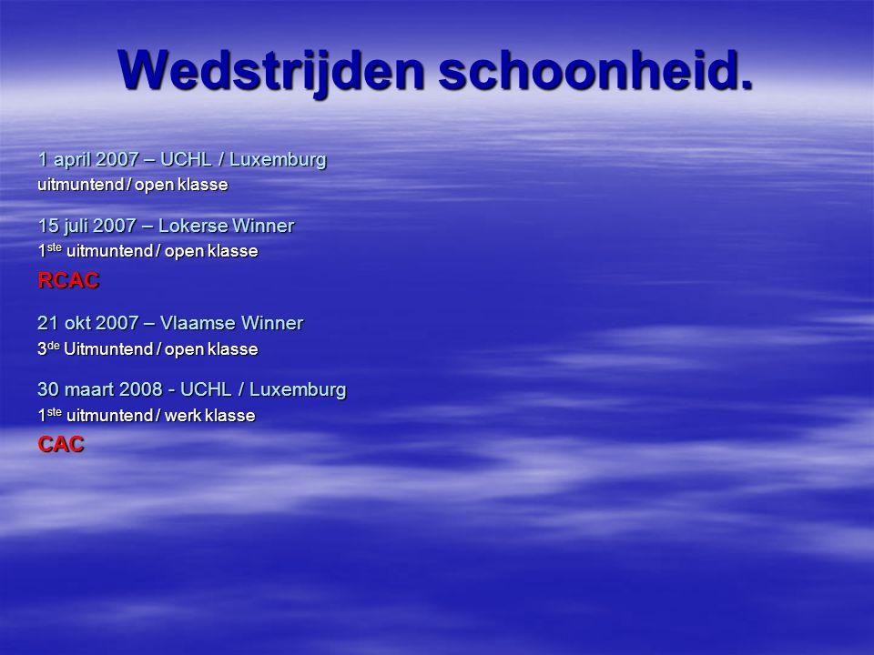 Wedstrijden schoonheid. 1 april 2007 – UCHL / Luxemburg uitmuntend / open klasse 15 juli 2007 – Lokerse Winner 1 ste uitmuntend / open klasse RCAC 21