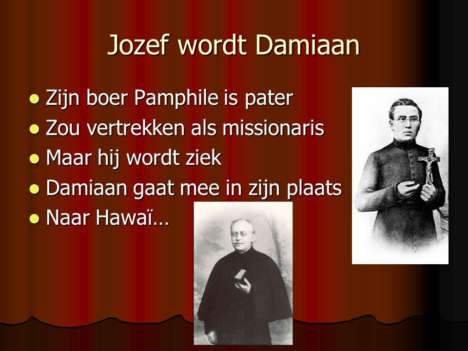 Jozef wordt Damiaan Zijn boer Pamphile is pater Zijn boer Pamphile is pater Zou vertrekken als missionaris Zou vertrekken als missionaris Maar hij wordt ziek Maar hij wordt ziek Damiaan gaat mee in zijn plaats Damiaan gaat mee in zijn plaats Naar Hawaï… Naar Hawaï…