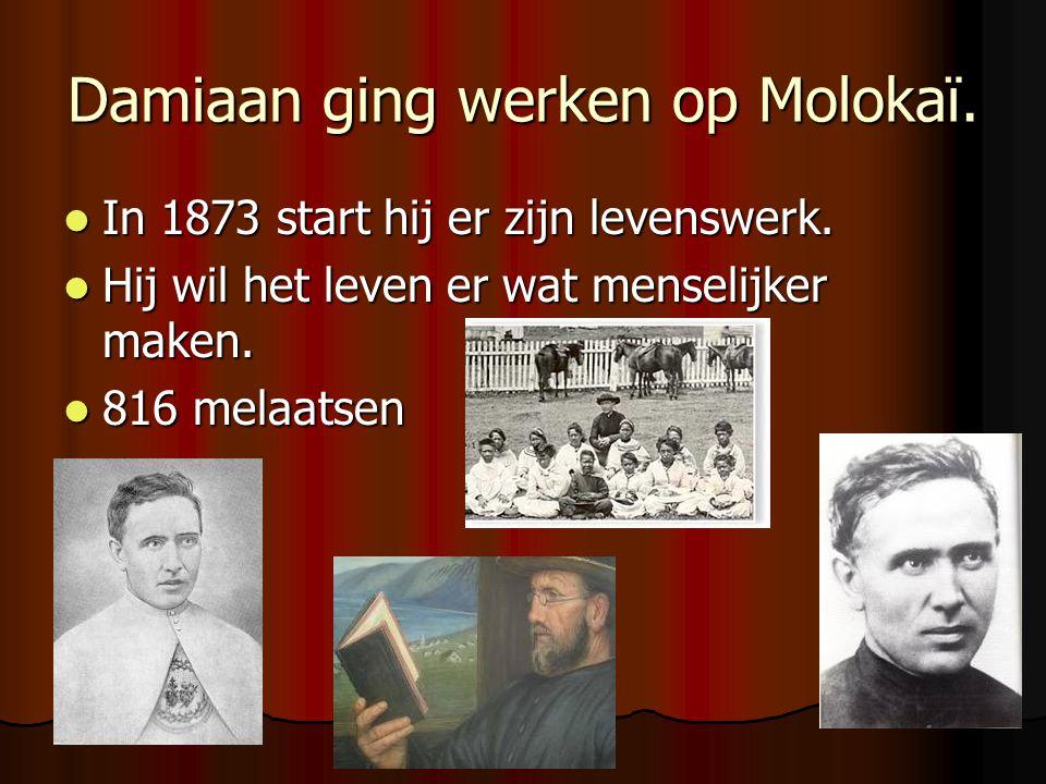 Damiaan ging werken op Molokaï. In 1873 start hij er zijn levenswerk. In 1873 start hij er zijn levenswerk. Hij wil het leven er wat menselijker maken