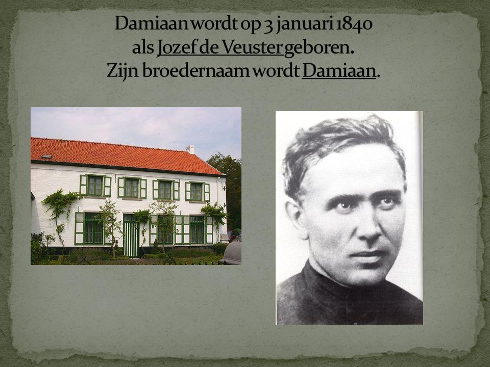 Omdat Damiaan 's broer niet kan gaan, gaat hij naar Honolulu op 19 maart 1864.