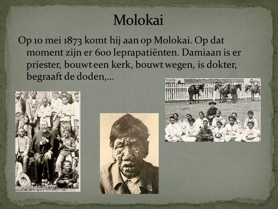 Op 10 mei 1873 komt hij aan op Molokai.Op dat moment zijn er 600 leprapatiënten.