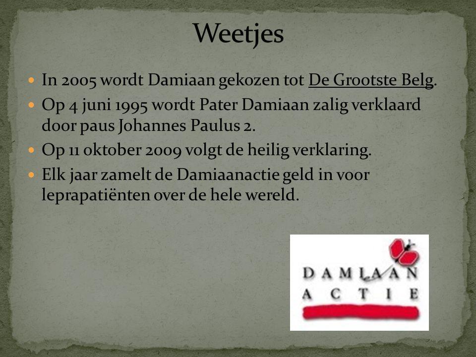 In 2005 wordt Damiaan gekozen tot De Grootste Belg.