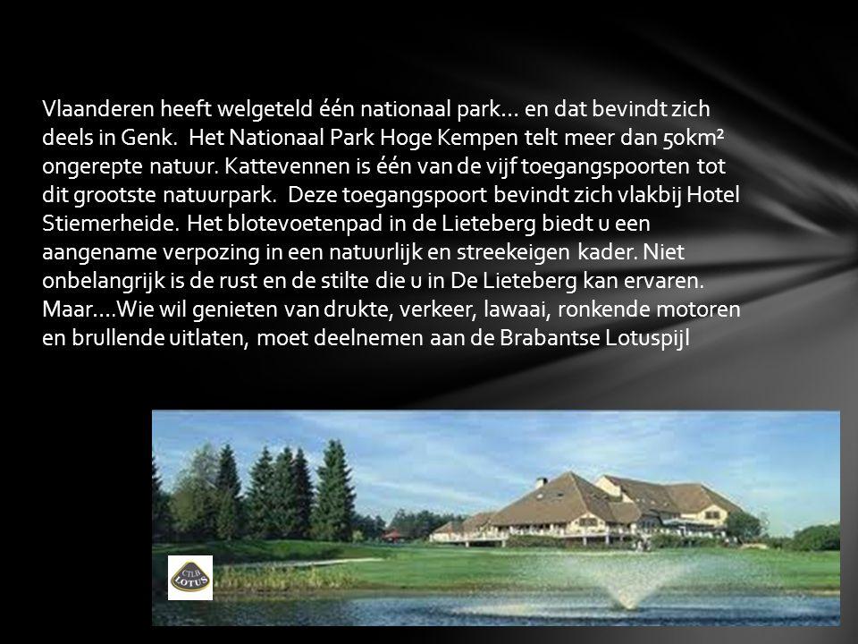 Vlaanderen heeft welgeteld één nationaal park… en dat bevindt zich deels in Genk. Het Nationaal Park Hoge Kempen telt meer dan 50km² ongerepte natuur.