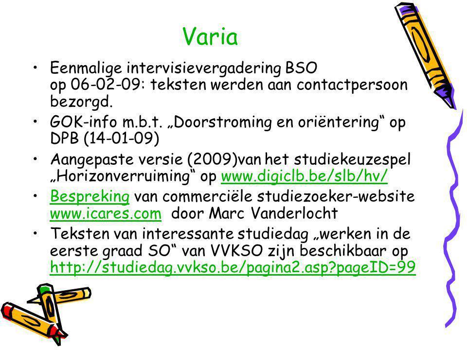 Varia Eenmalige intervisievergadering BSO op 06-02-09: teksten werden aan contactpersoon bezorgd.