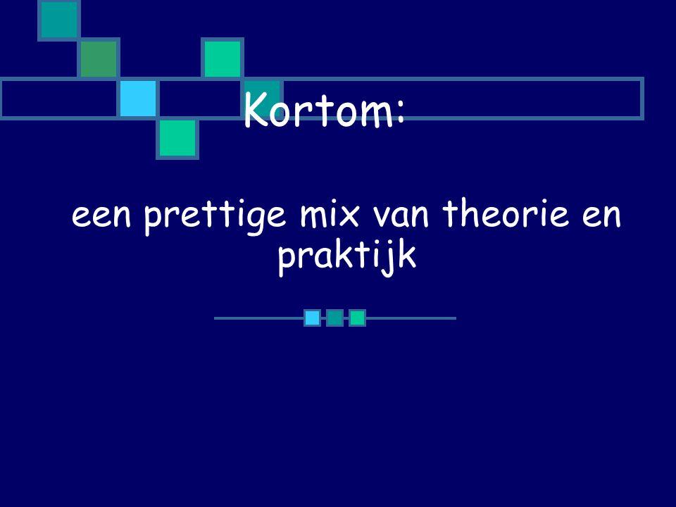 een prettige mix van theorie en praktijk Kortom: