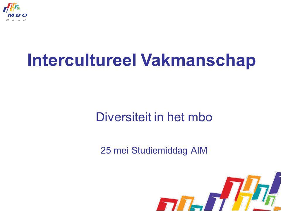 Intercultureel Vakmanschap Diversiteit in het mbo 25 mei Studiemiddag AIM