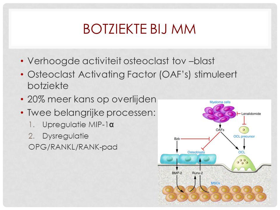 BOTZIEKTE BIJ MM Verhoogde activiteit osteoclast tov –blast Osteoclast Activating Factor (OAF's) stimuleert botziekte 20% meer kans op overlijden Twee belangrijke processen: 1.Upregulatie MIP-1 α 2.Dysregulatie OPG/RANKL/RANK-pad