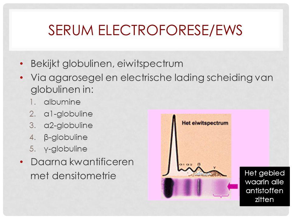 SERUM ELECTROFORESE/EWS Bekijkt globulinen, eiwitspectrum Via agarosegel en electrische lading scheiding van globulinen in: 1.albumine 2.α1-globuline 3.α2-globuline 4.β-globuline 5.γ-globuline Daarna kwantificeren met densitometrie Het gebied waarin alle antistoffen zitten