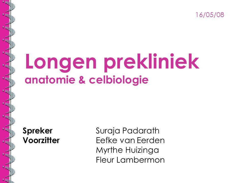 Longen prekliniek anatomie & celbiologie Spreker Suraja Padarath Voorzitter Eefke van Eerden Myrthe Huizinga Fleur Lambermon 16/05/08