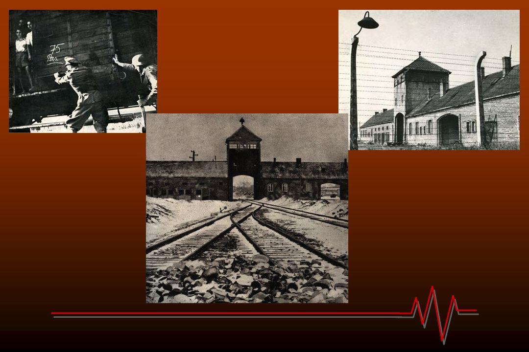 Hongerwinter '44 – ' 45 De Hongerwinter van oktober 1944 tot februari 1945 was een tijd van uiterste ontbering voor hoofdzakelijk de stadsbevolking van de provincies Noord-Holland, Zuid-Holland en Utrecht.