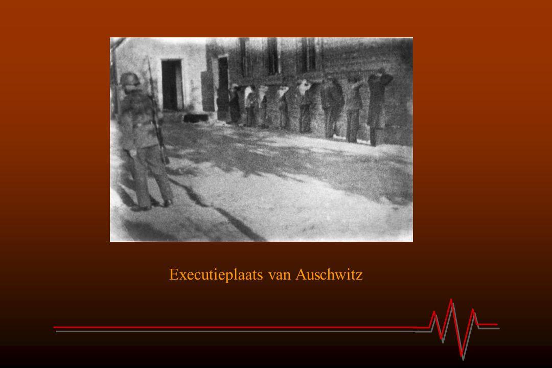 Executieplaats van Auschwitz