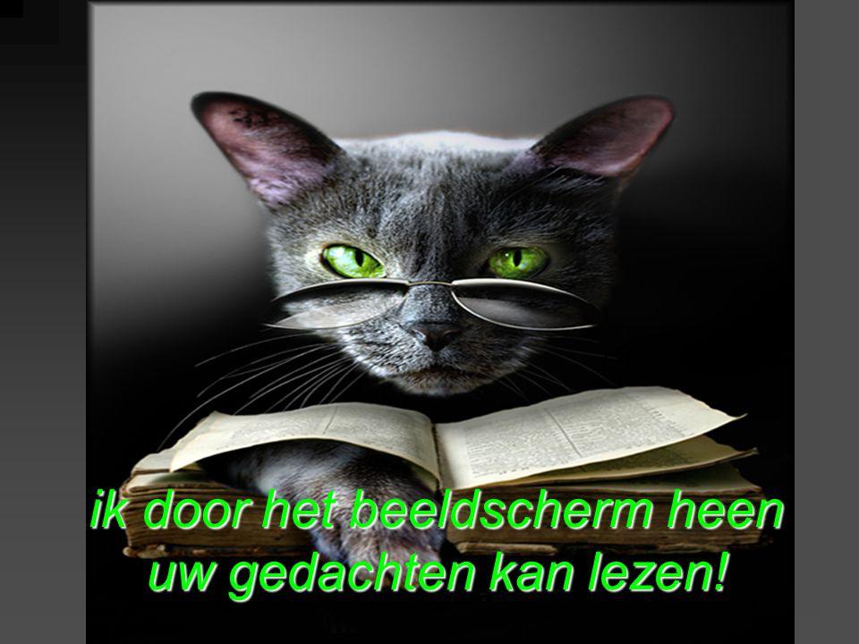 ik door het beeldscherm heen uw gedachten kan lezen!