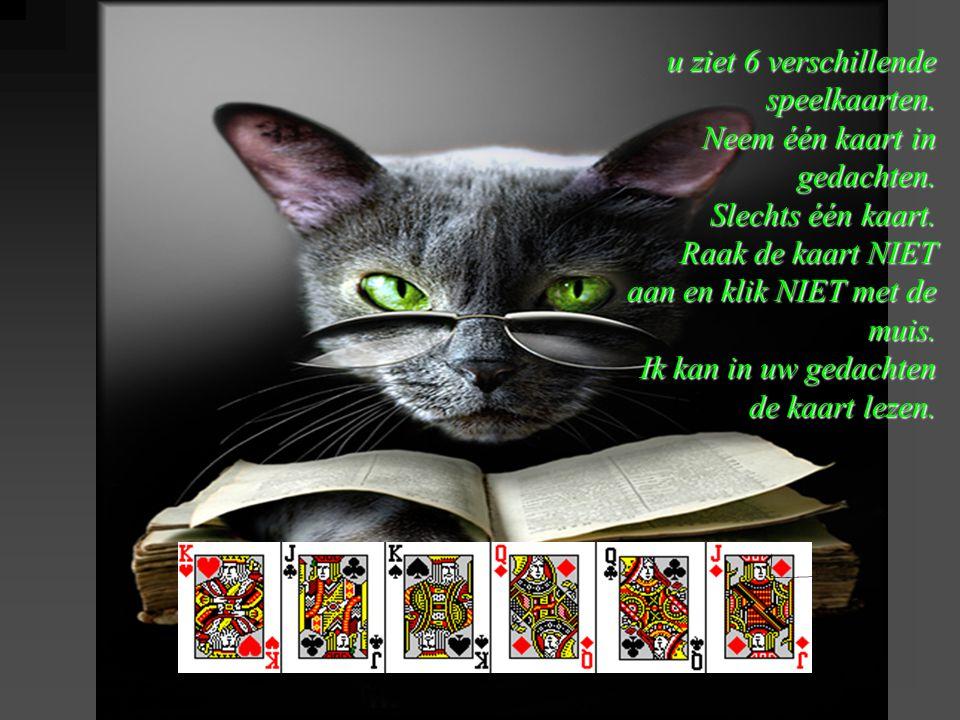u ziet 6 verschillende speelkaarten. Neem één kaart in gedachten. Slechts één kaart. Raak de kaart NIET aan en klik NIET met de muis. Ik kan in uw ged