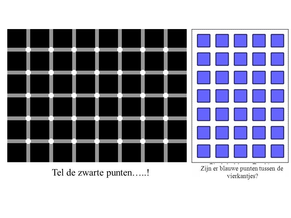 De onmogelijke driehoek… Is de blauwe zijde binnen links of buiten links.