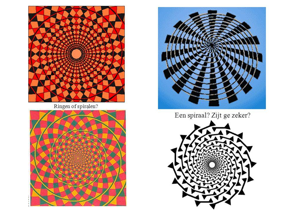 Ziet ge een paar of een doodskop? Hoeveel gezichten ziet ge?