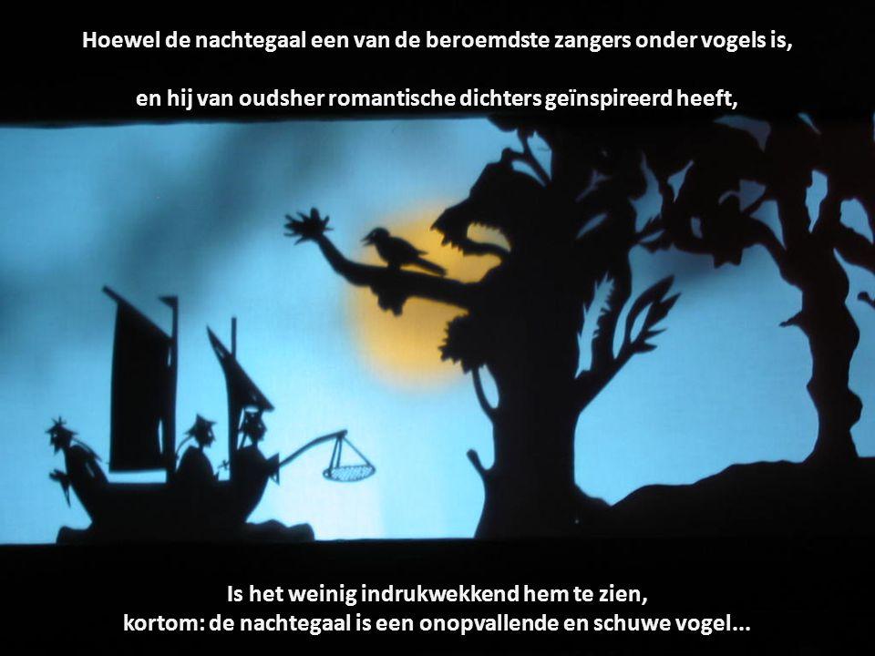 Hoewel de nachtegaal een van de beroemdste zangers onder vogels is, en hij van oudsher romantische dichters geïnspireerd heeft, Is het weinig indrukwekkend hem te zien, kortom: de nachtegaal is een onopvallende en schuwe vogel...