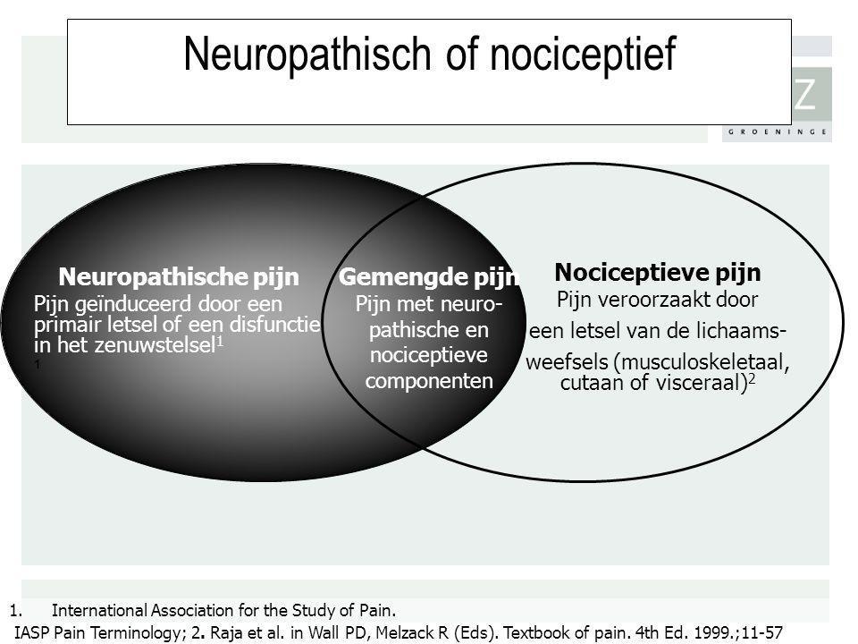 Neuropathisch of nociceptief Gemengde pijn Pijn met neuro- pathische en nociceptieve componenten Neuropathische pijn Pijn geïnduceerd door een primair
