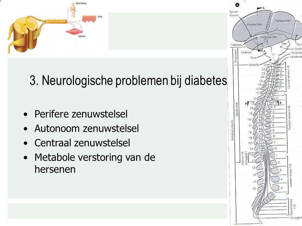3. Neurologische problemen bij diabetes Perifere zenuwstelsel Autonoom zenuwstelsel Centraal zenuwstelsel Metabole verstoring van de hersenen