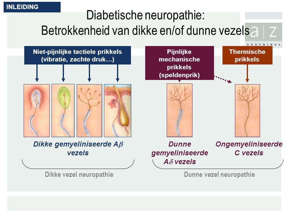 Diabetische neuropathie: Betrokkenheid van dikke en/of dunne vezels Dunne gemyeliniseerde A  vezels Ongemyeliniseerde C vezels Dikke gemyeliniseerde
