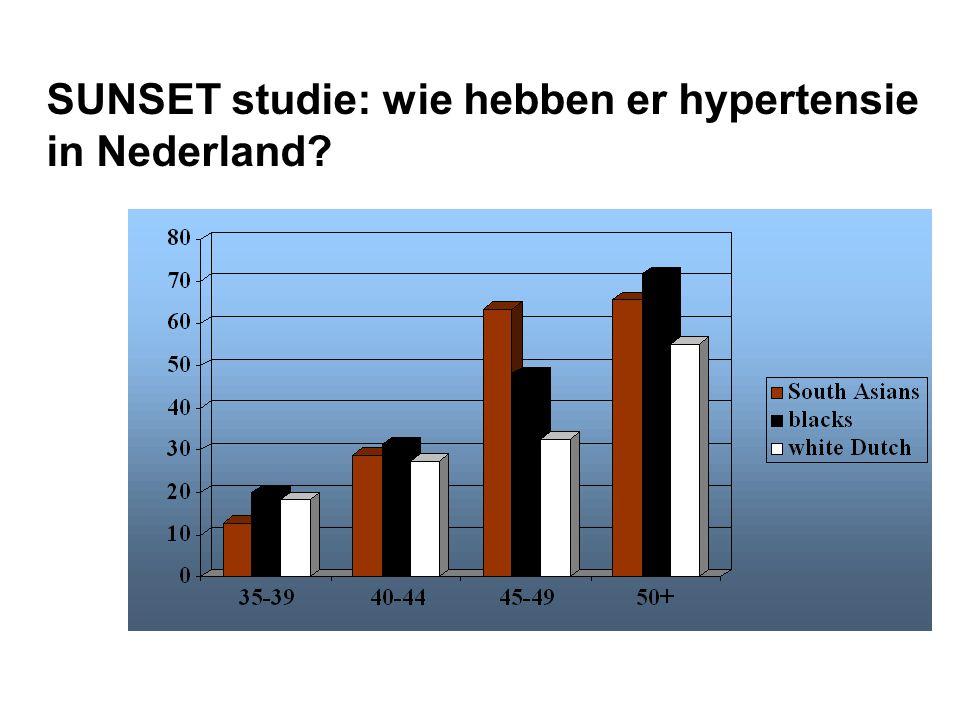 SUNSET studie: wie hebben er hypertensie in Nederland?