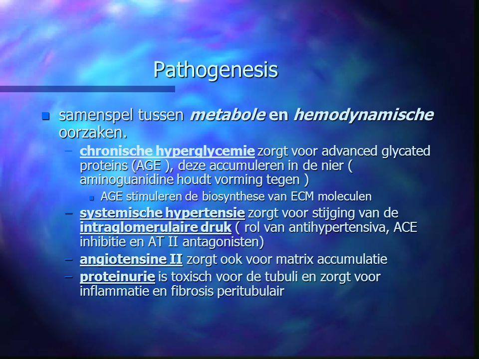 Pathogenesis n samenspel tussen metabole en hemodynamische oorzaken. – zorgt voor advanced glycated proteins (AGE ), deze accumuleren in de nier ( ami
