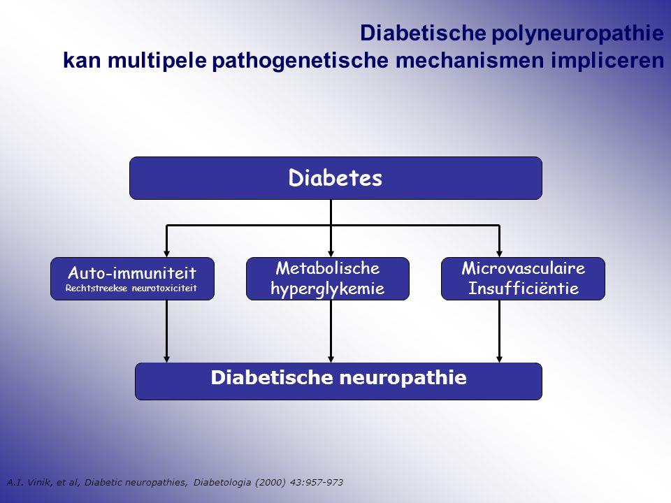 Diabetische polyneuropathie kan multipele pathogenetische mechanismen impliceren Diabetische neuropathie Auto-immuniteit Rechtstreekse neurotoxiciteit