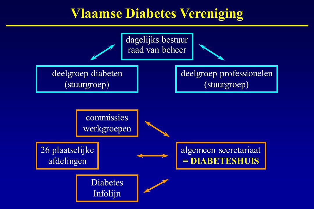 dagelijks bestuur raad van beheer Vlaamse Diabetes Vereniging deelgroep professionelen (stuurgroep) deelgroep diabeten (stuurgroep) 26 plaatselijke af